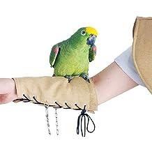 Beaks And Paws B/&P Metal Bird Feeder Wild Bird