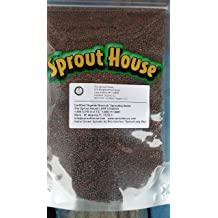 Great for Sprouts, Kosher Organic Clover Sprouting Seeds by Food to Live